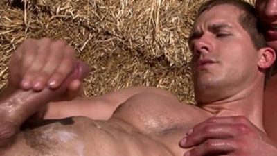 bodybuilder  cock sucking  dicks